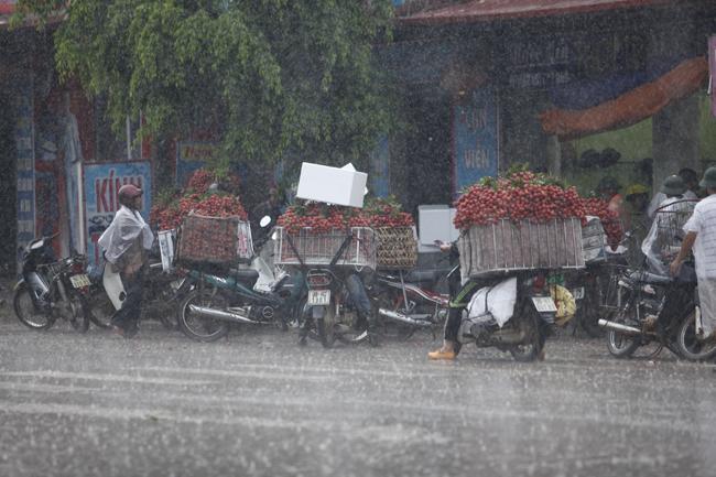 Dân Bắc Giang đội nắng, dầm mưa đi bán vải - 4