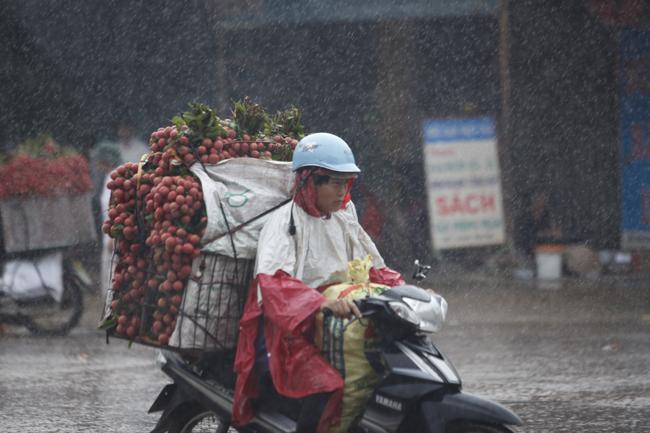 Dân Bắc Giang đội nắng, dầm mưa đi bán vải - 3