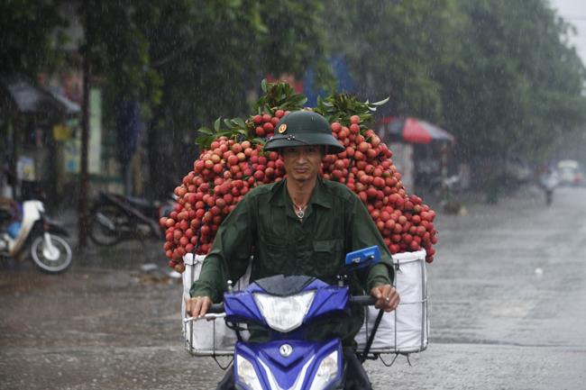 Dân Bắc Giang đội nắng, dầm mưa đi bán vải - 2