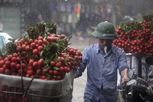 Dân Bắc Giang đội nắng, dầm mưa đi bán vải - 10