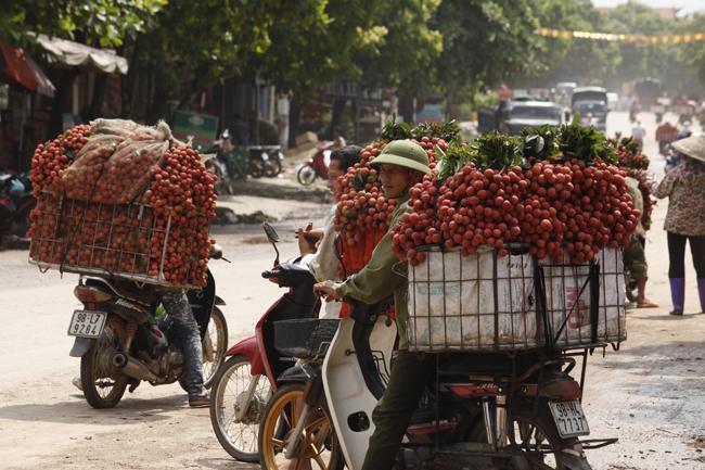 Dân Bắc Giang đội nắng, dầm mưa đi bán vải - 15