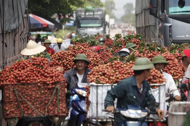 Dân Bắc Giang đội nắng, dầm mưa đi bán vải - 20