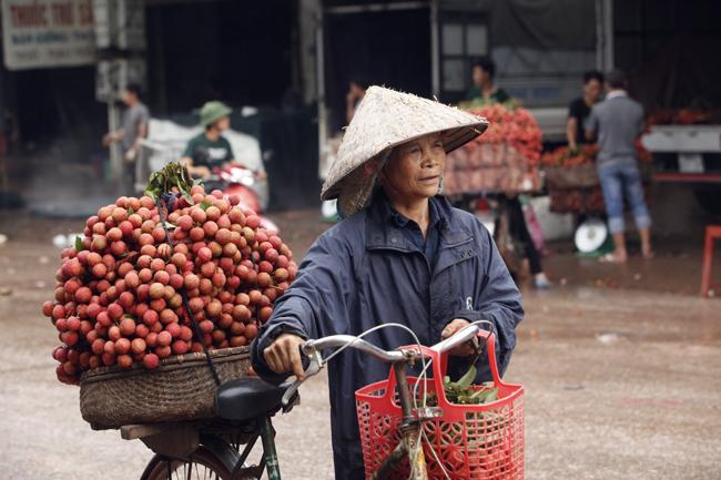 Dân Bắc Giang đội nắng, dầm mưa đi bán vải - 18