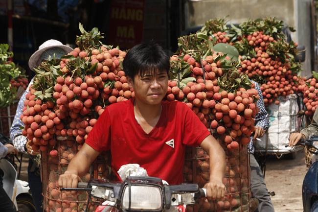 Dân Bắc Giang đội nắng, dầm mưa đi bán vải - 17