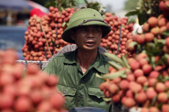 Dân Bắc Giang đội nắng, dầm mưa đi bán vải - 19