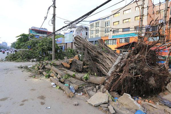 HN: 3 ngày sau dông lốc, cây đổ vẫn ngổn ngang trên đường - 4