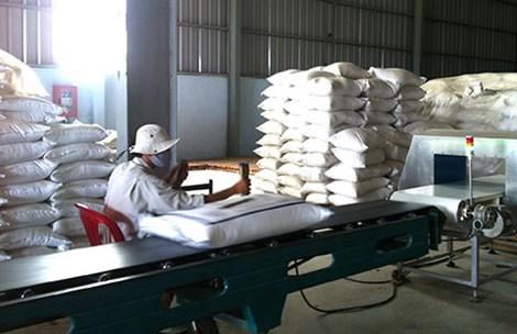 Gạo Việt tắc đầu ra vì phụ thuộc Trung Quốc - 1