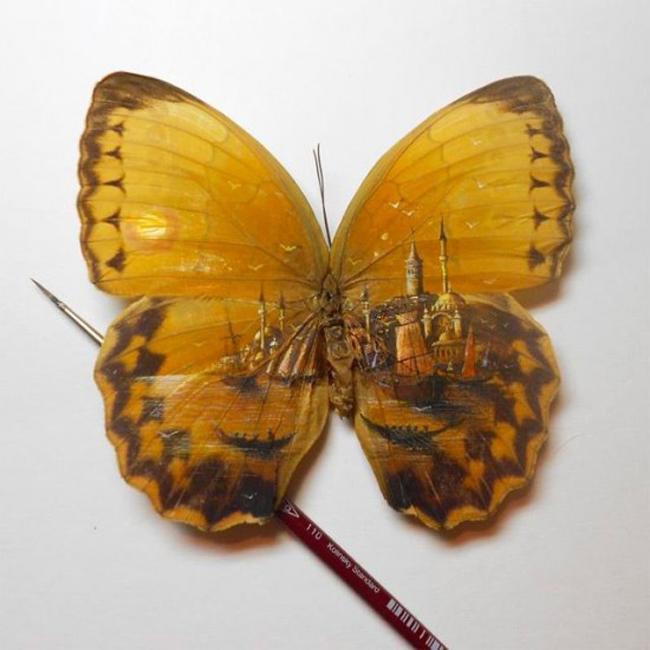 """Clip vẽ tranh trên cánh bướm """"hớp hồn"""" triệu người - 10"""