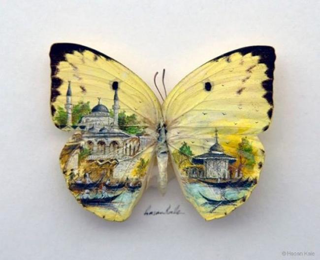 """Clip vẽ tranh trên cánh bướm """"hớp hồn"""" triệu người - 11"""