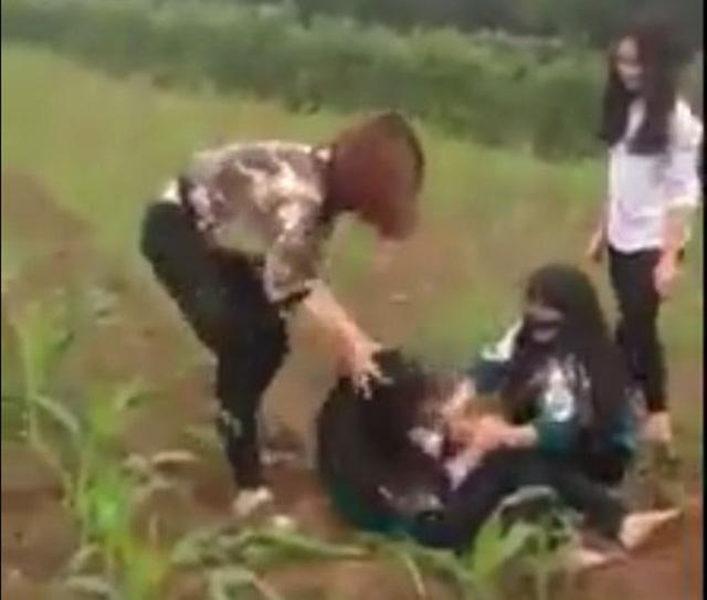 Xôn xao clip nữ sinh bị đánh hội đồng giữa cánh đồng ngô - 1