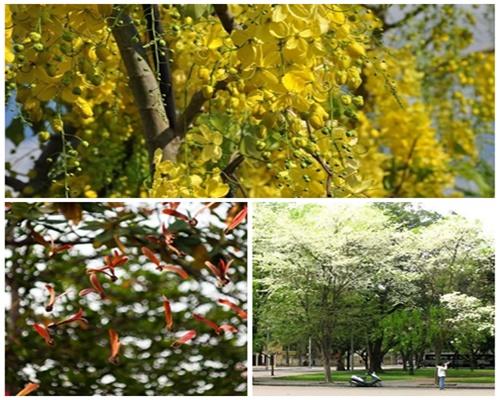 Những địa điểm tuyệt vời cho kỳ nghỉ dài tháng 4 - 4