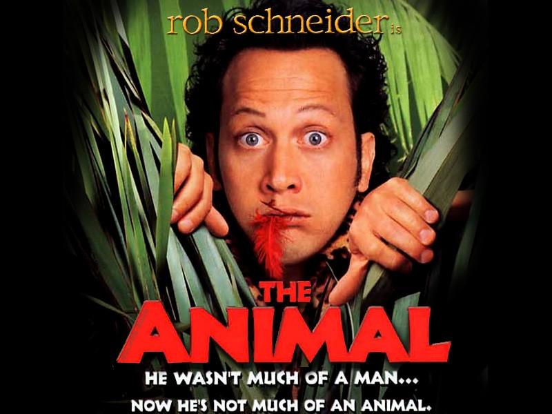 Trailer phim: The Animal - 1
