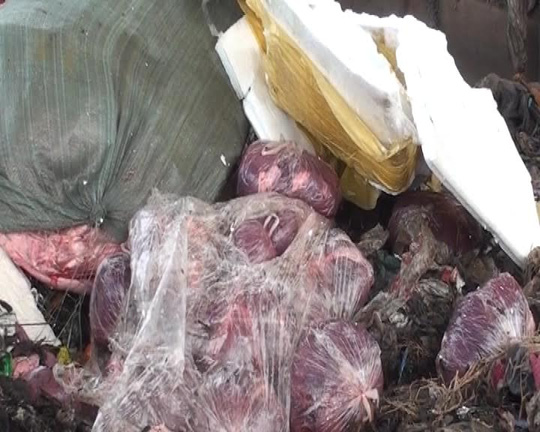1,6 tấn nội tạng giấu trên xe khách biển số Lào - 1