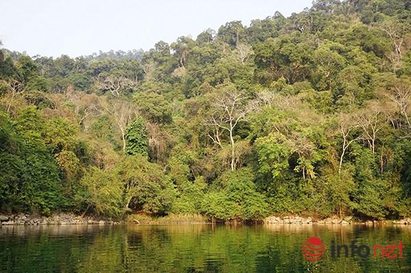 Vẻ đẹp nguyên thủy của hồ Ba Bể - 1