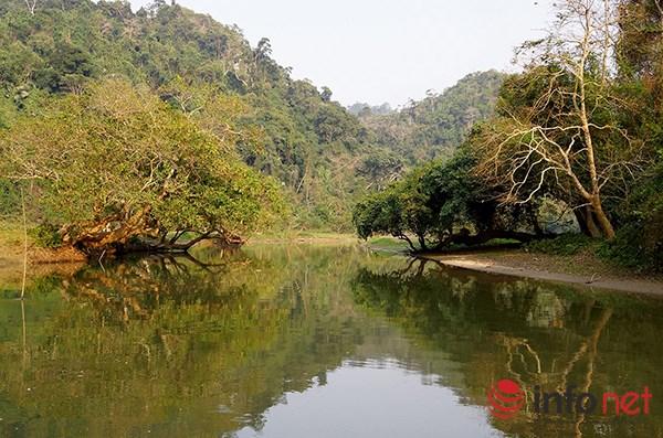 Vẻ đẹp nguyên thủy của hồ Ba Bể - 2