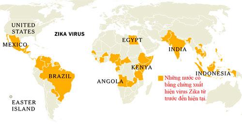 Thêm bằng chứng virus Zika liên quan bất thường não thai nhi - 2