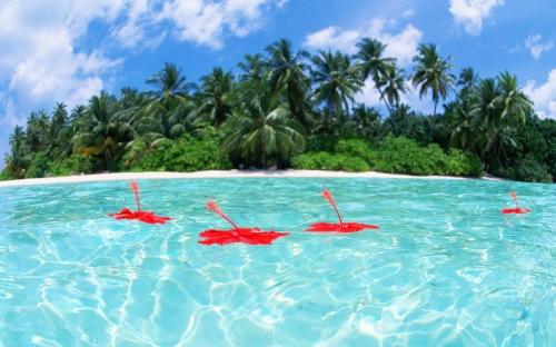 """""""Phát sốt"""" với cảnh đẹp ở Maldives - 5"""