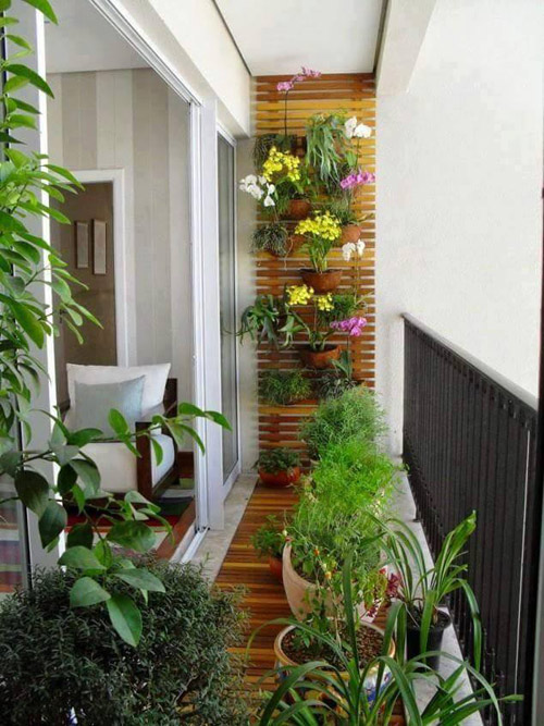 Five Star Garden: mừng cất nóc – tặng bếp Âu - 3