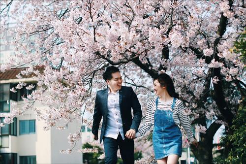 Ảnh cưới bên hoa anh đào Hàn Quốc mê hoặc giới trẻ - 4