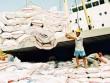 Trung Quốc đẩy mạnh mua gạo Việt