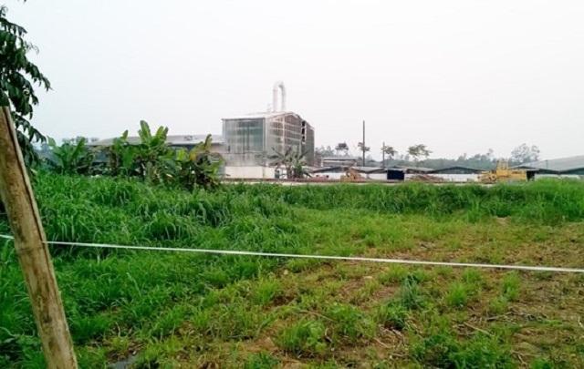 Nổ ở nhà máy sắn Nghệ An, 5 công nhân bị bỏng nặng - 1