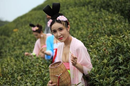 Thiếu nữ Trung Quốc ăn mặc nóng bỏng đi hái trà - 3