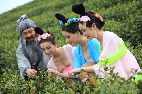 Thiếu nữ Trung Quốc ăn mặc nóng bỏng đi hái trà - 4