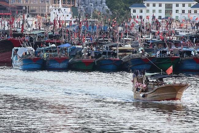 TQ bỏ tiền thuê ngư dân ra Hoàng Sa, 27.000 USD mỗi tàu - 2