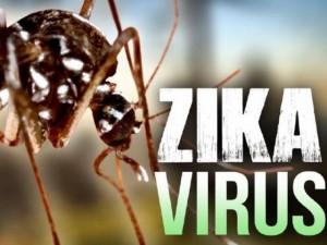 Sức khỏe đời sống - Truy tìm nguồn gốc nhiễm Zika của bệnh nhân ở Khánh Hòa