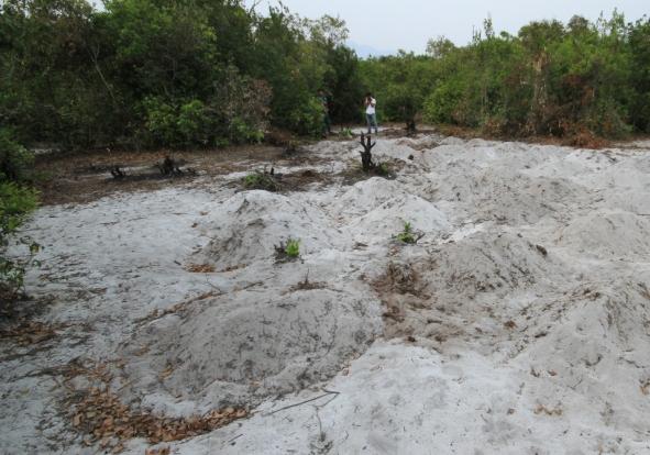 Đắp mộ giả để được đền bù - Dân đắp mộ giả ở Đà Nẵng - 1