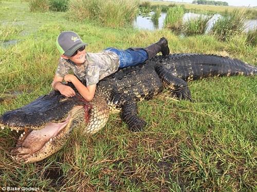 Bắt cá sấu nặng gần 300 kg ngay trong ao nhà - 4