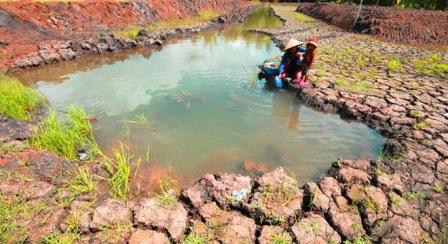 Việt Nam có nên làm mưa nhân tạo cứu hạn ở Miền Tây Nam Bộ? - 1