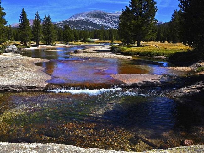 Đi bộ ở công viên Pacific Crest Trail thông qua 3 bang của nước Mỹ: California, Oregon, và Washington. Đường mòn dài 4264km, nhưng bạn không cần phải đi hết cùng một lúc.