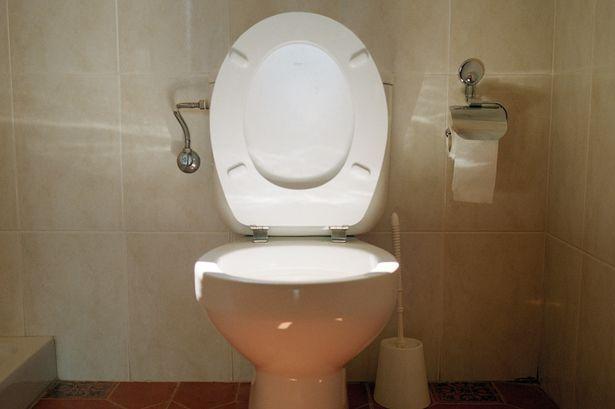Anh: Cho thuê toilet giá 95 triệu/tháng - 1