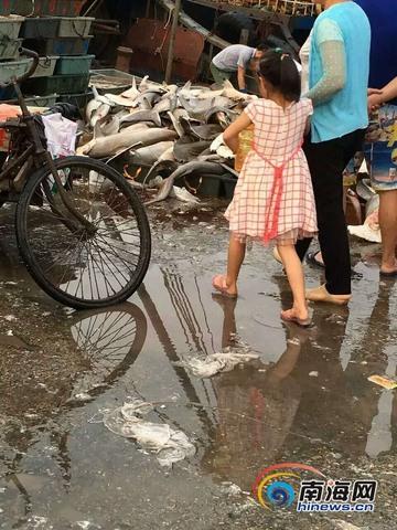 TQ: Hàng trăm cá mập đầu búa chất đống ở chợ, bán rẻ bèo - 5