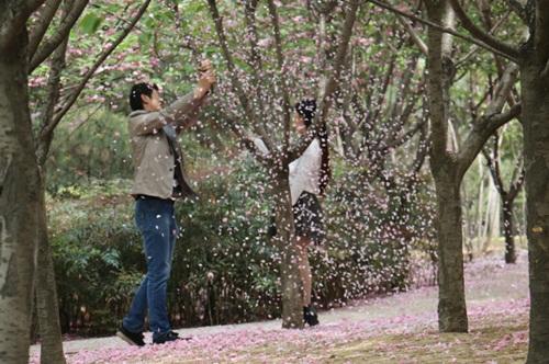 """""""Soái ca"""" rung cây cho hoa rụng để bạn gái chụp ảnh - 4"""