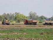 """Tài chính - Bất động sản - Nông dân """"vô tư"""" bán hàng ngàn héc ta đất mặt"""