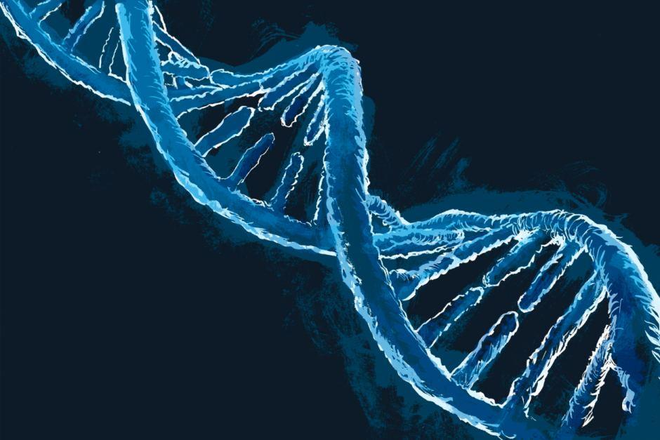 """Truy tìm 13 người giấu mặt có ADN """"siêu nhân"""" - 2"""
