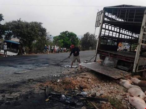 Gần 100 chú heo nằm chết la liệt sau vụ tai nạn - 9