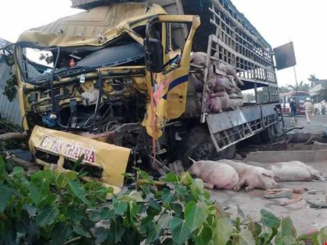 Gần 100 chú heo nằm chết la liệt sau vụ tai nạn - 1
