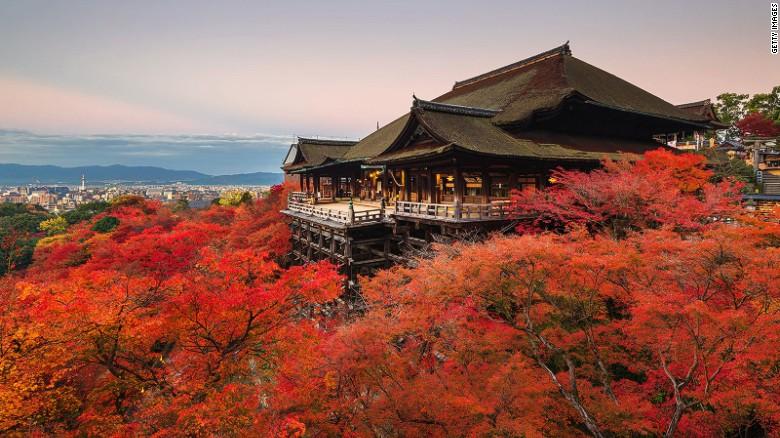 Chiêm ngưỡng những tuyệt tác đền, chùa ở Nhật Bản - 1
