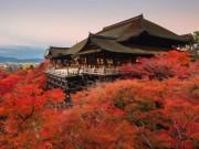 Du lịch - Chiêm ngưỡng những tuyệt tác đền, chùa ở Nhật Bản