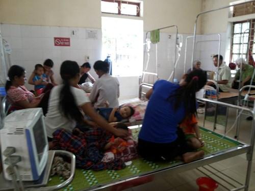 Ong vỡ tổ tấn công cô giáo và 17 học sinh ở Nghệ An - 1