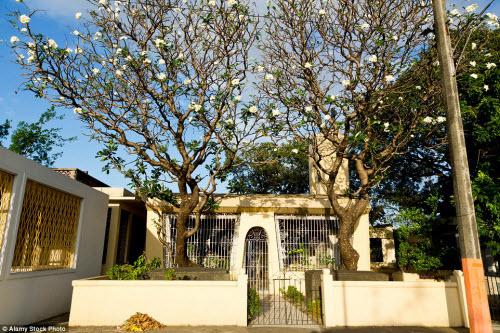 Nghĩa địa siêu sang dành cho người giàu ở Philippines - 8