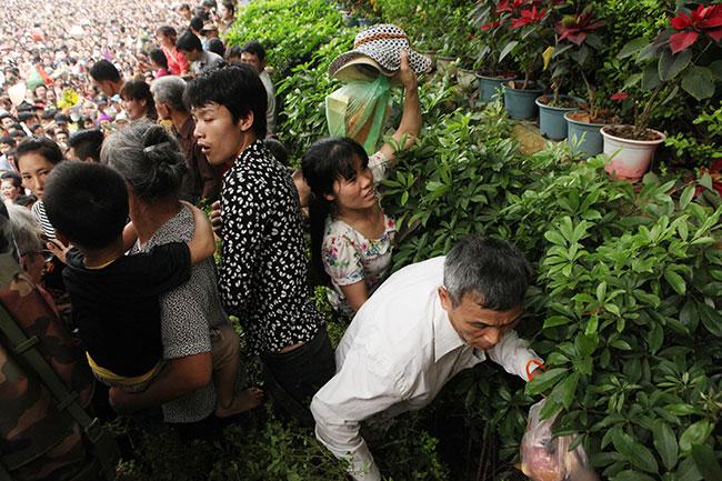Trẻ nhỏ được chuyền tay để thoát đám đông xô đẩy ở đất Tổ - 14