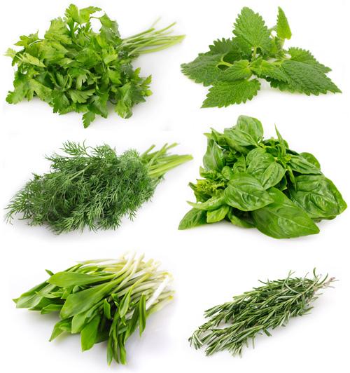 9 thực phẩm dễ biến thành chất độc khi trữ tủ lạnh - 9