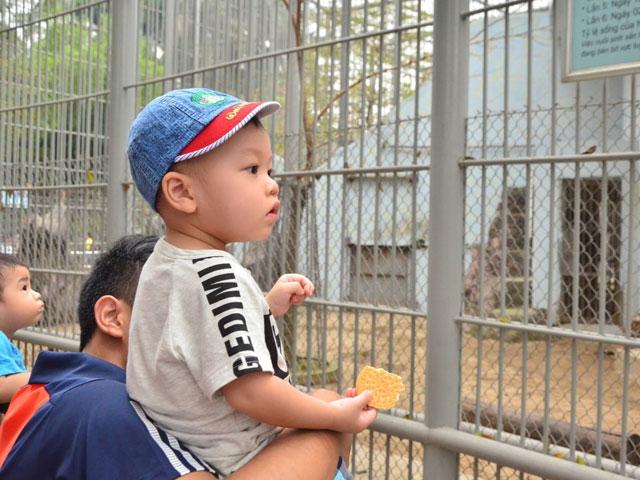 Công viên quá đông, bố cõng con lên cổ xem muông thú - 5