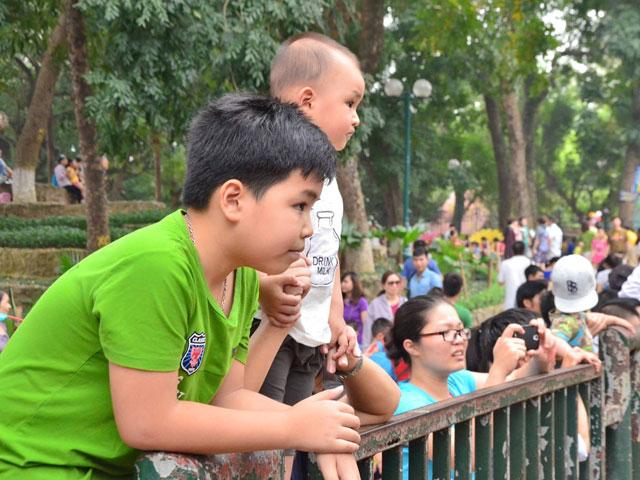 Công viên quá đông, bố cõng con lên cổ xem muông thú - 6