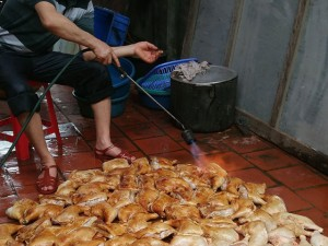 """Thị trường - Tiêu dùng - HN: Bán thực phẩm bẩn sẽ bị """"bêu tên"""" trên loa phường"""
