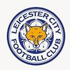 Truc tiep Leicester City vs West Ham - 1
